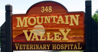 Services at Mountain Valley Veterinary Hospital